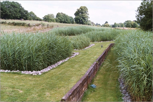 Reed Beds Effluent And Waste Water Treatment What Is A