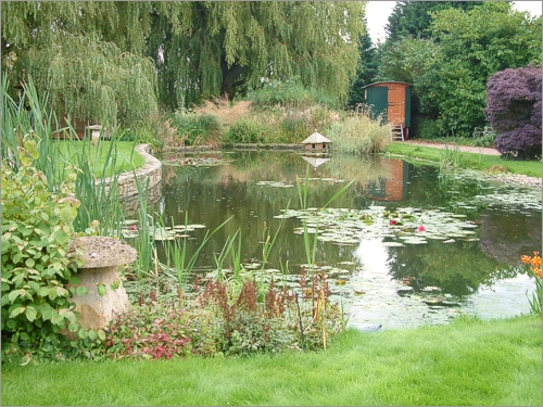 Reed Beds Effluent And Waste Water Treatment What Are